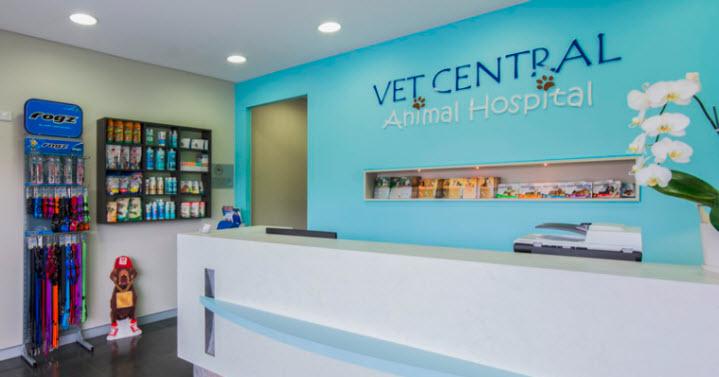 Vet near me | Earlwood vet Hospital | Vet Clinic near me